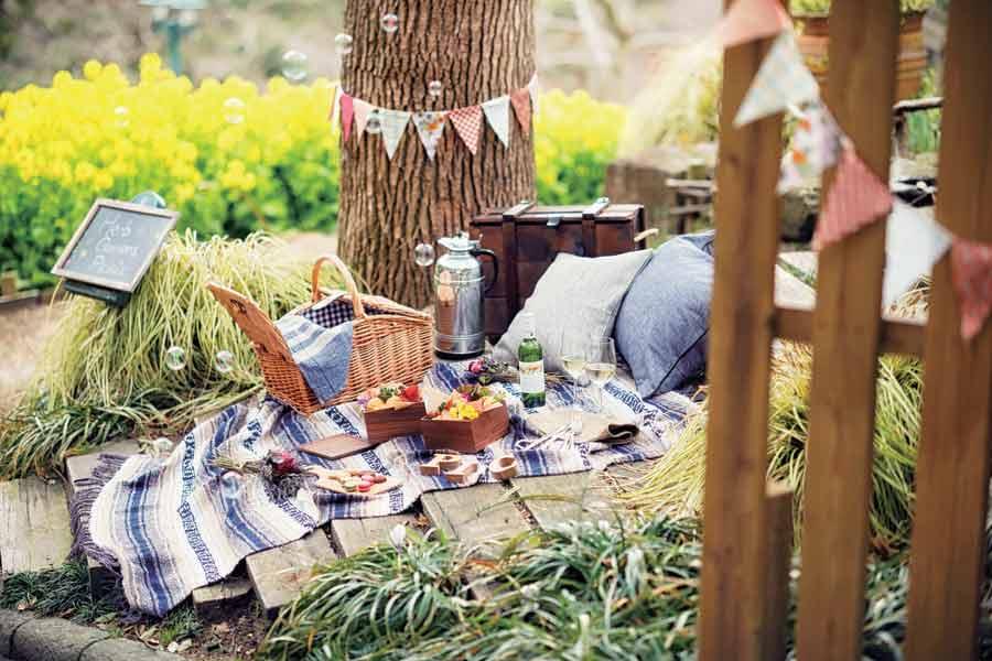おしゃれピクニック