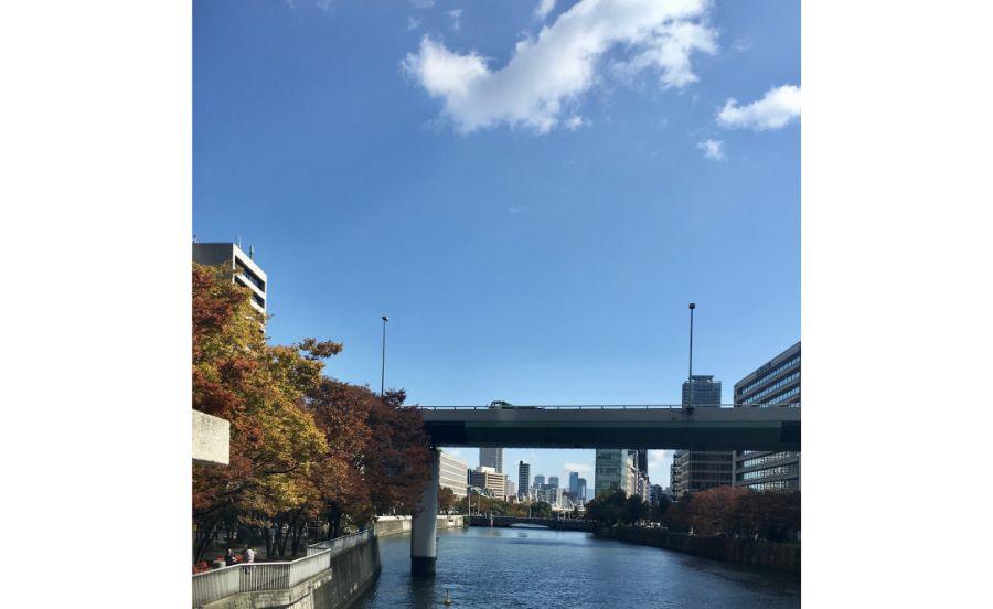 肥後橋付近から淀屋橋方面を望む