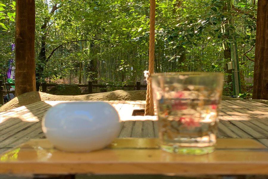 昔の井戸が残る野宮神社境内