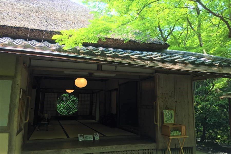 青紅葉と藁ぶき屋根の建築物