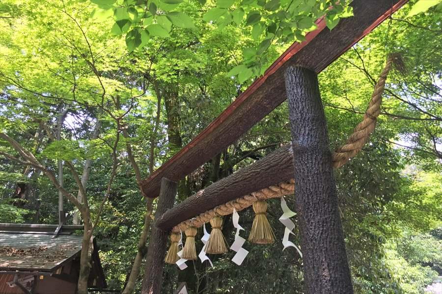 野宮神社の入り口には珍しい黒鳥居