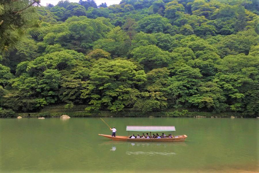 桂川をゆっくり進んでいく屋形船