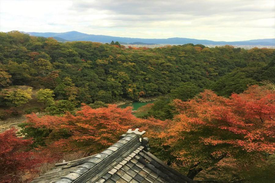 千光寺から眼下に見える嵐峡と山々