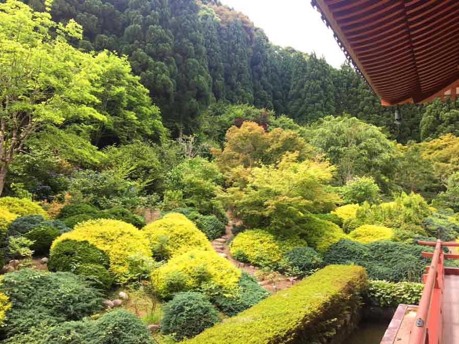 本堂から見る庭園と借景