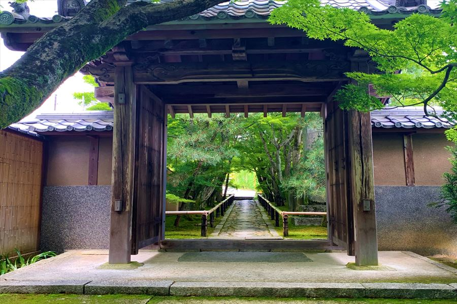 奥へとのびる石畳が美しい光悦寺