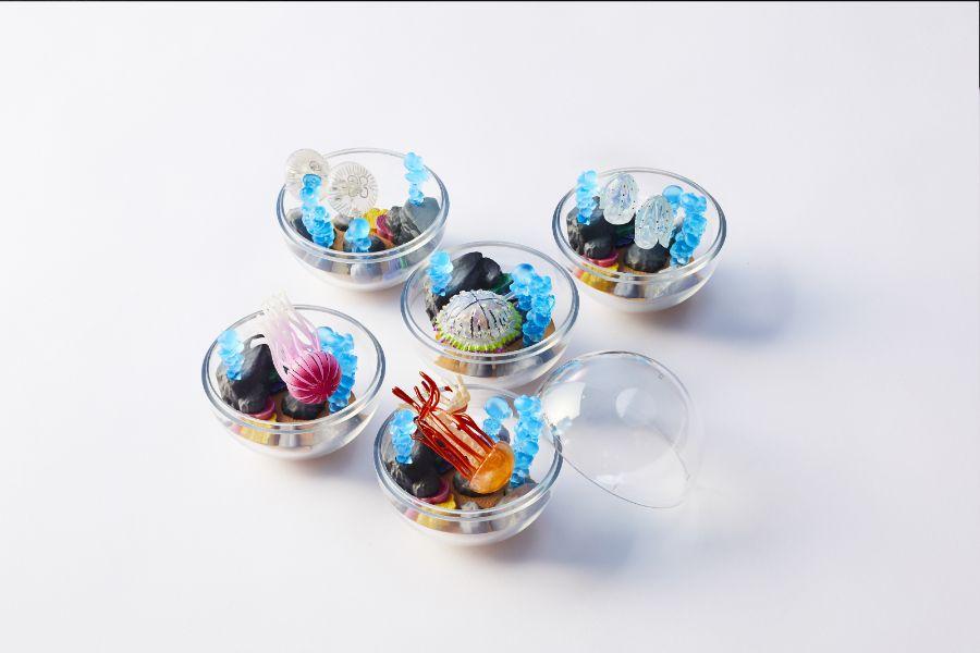 カプリウムコレクション 京都水族館限定