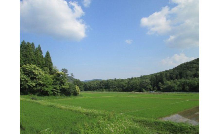 西谷の森公園
