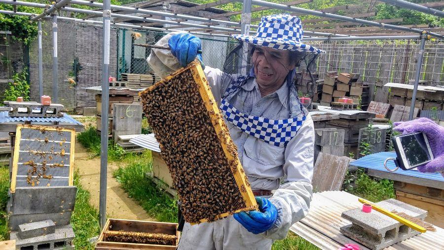 宝塚はちみつのオーナーで養蜂家の明利さん