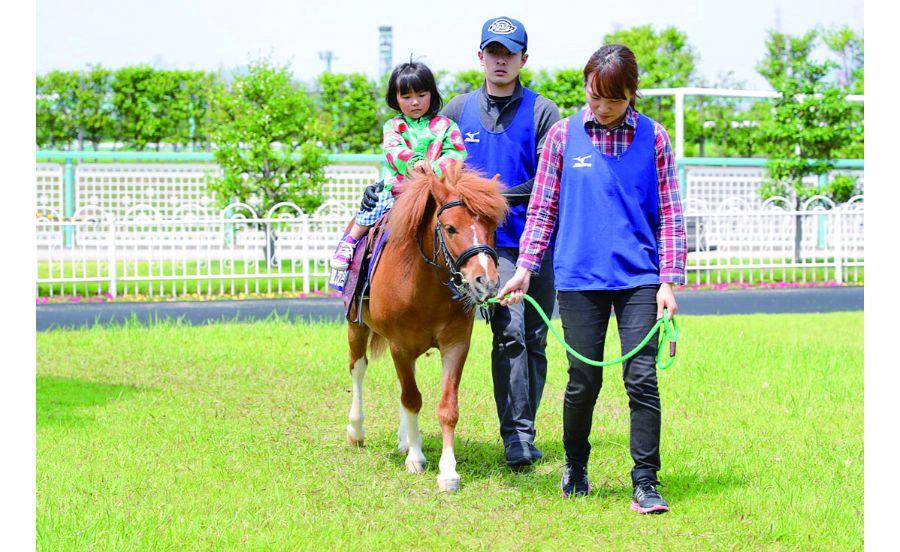 こども乗馬も実施しているJRA阪神競馬場