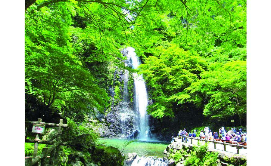 涼しげな水の流れが目にも爽やかな箕面の滝