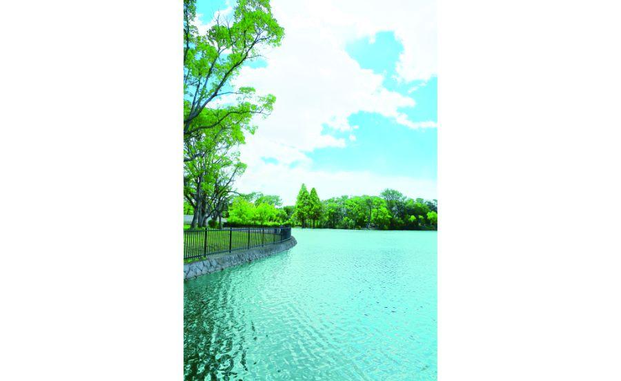 山が池越しに見える服部緑地