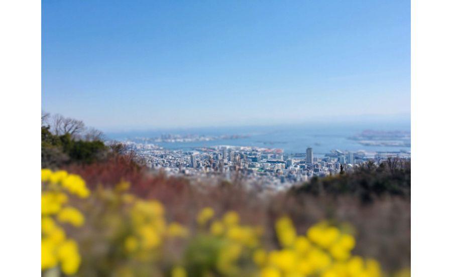 ザ・ヴェランダ神戸からの眺め