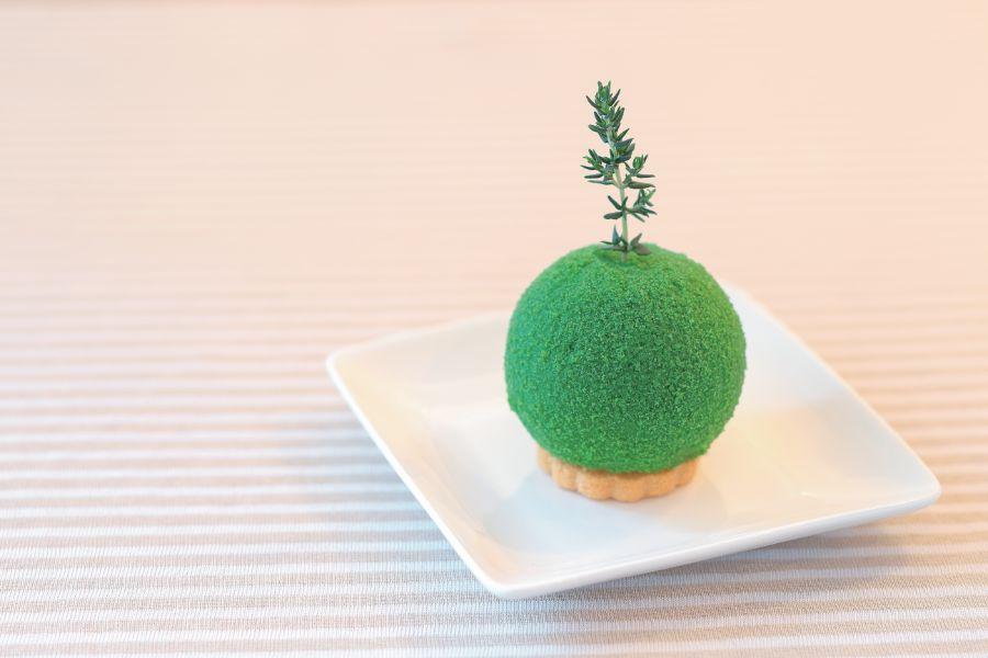 苔玉のようなケーキ