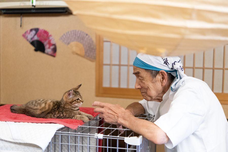 猫と戯れる隆幸さん