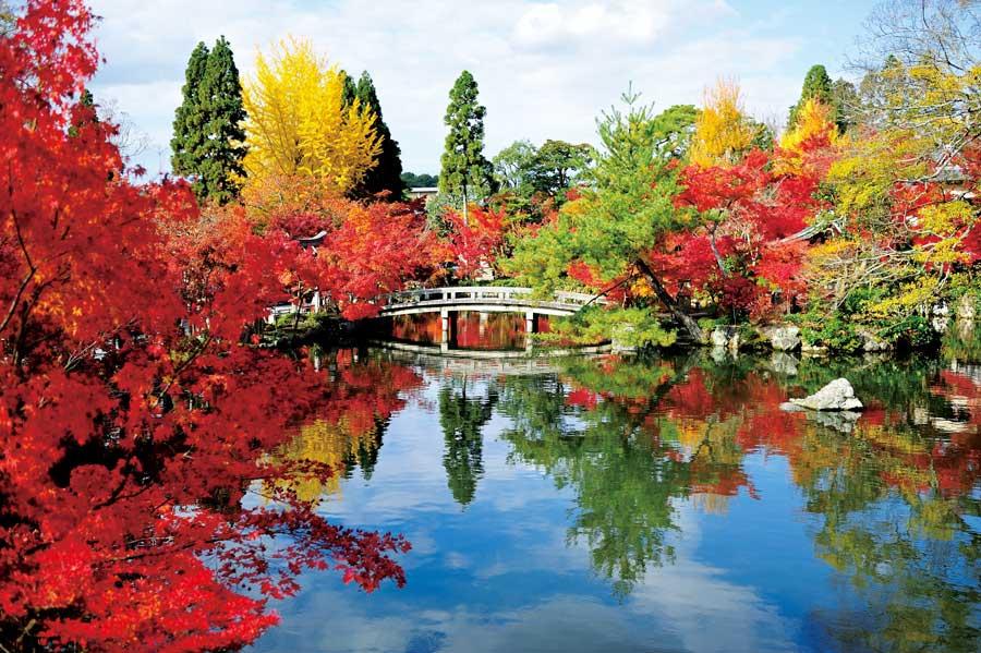 池にうつる紅葉