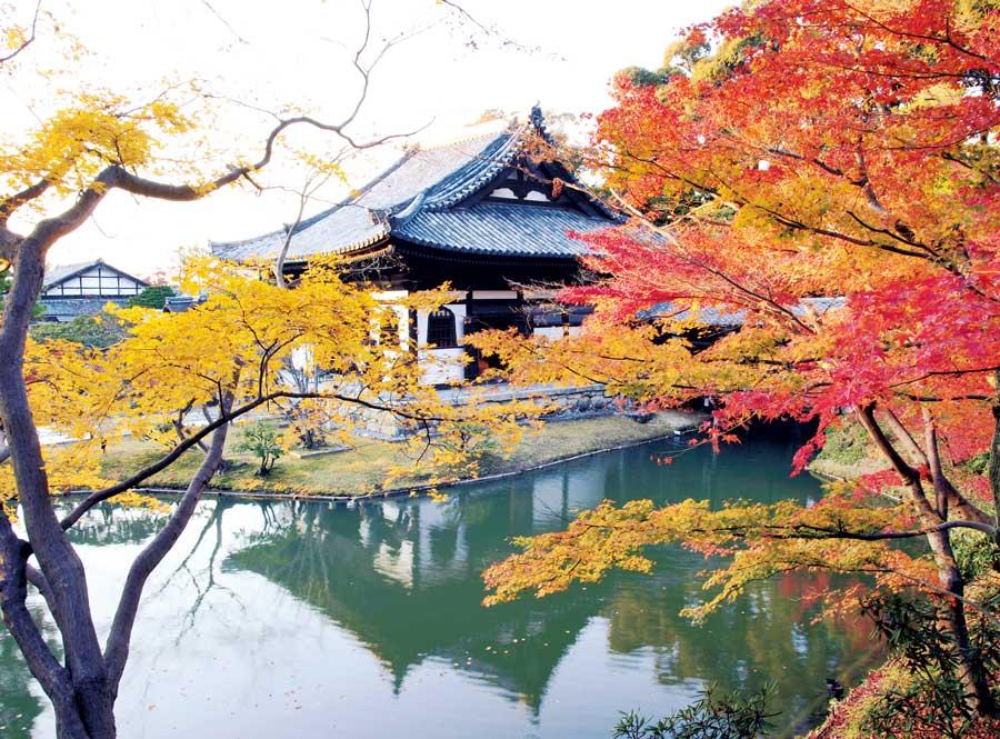 歴史的な建物と鮮やかな紅葉