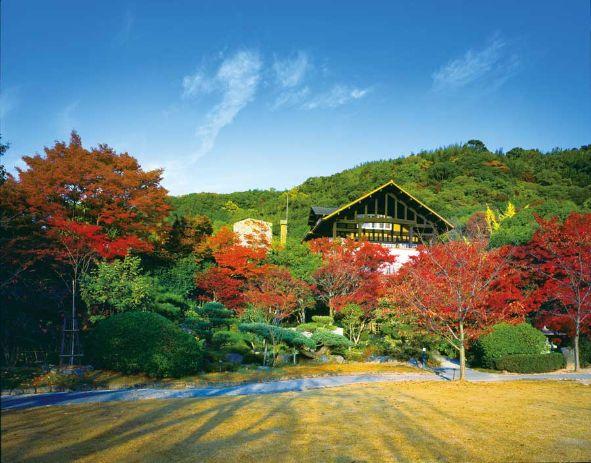 青空に映える紅葉と建物