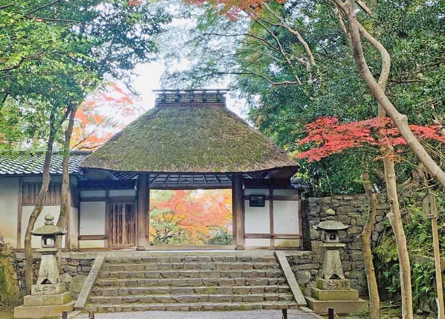 法然院の門と紅葉