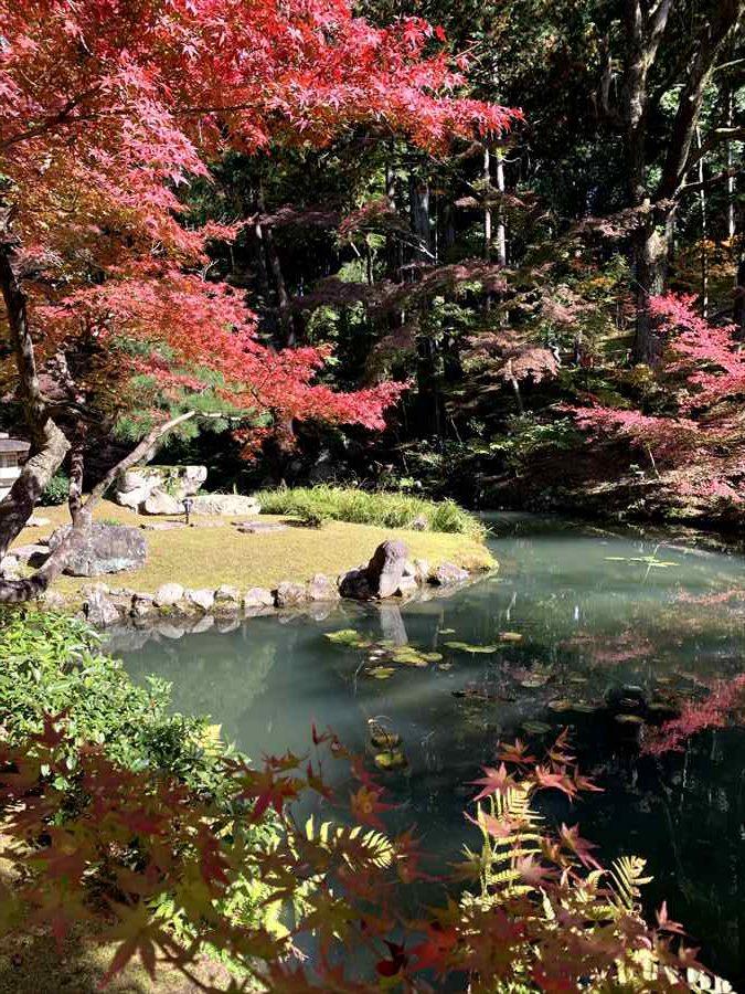 金戒光明寺の庭園。池に映る紅葉