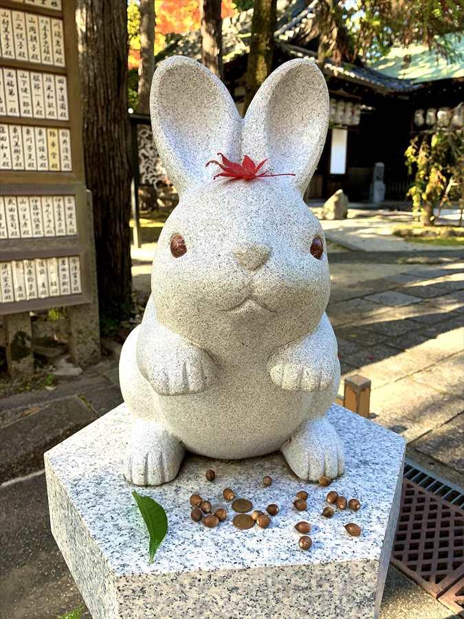 岡崎神社の狛うさぎ