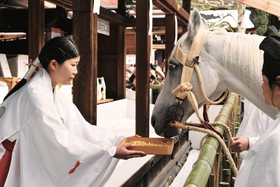 巫女さんと白い馬の神事
