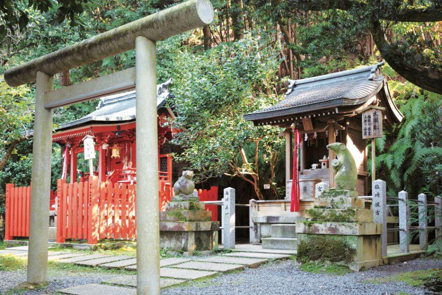 大豊神社の鳥居と本殿