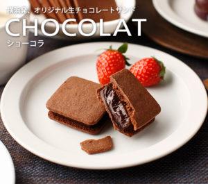 皿に盛り付けたチョコレートサンド