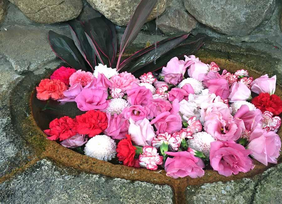 バラなどを使用したゴージャスな花手水