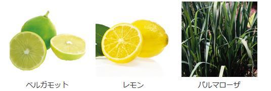 ハンドクリームの含有成分ベルガモット、レモン、パルマローザ