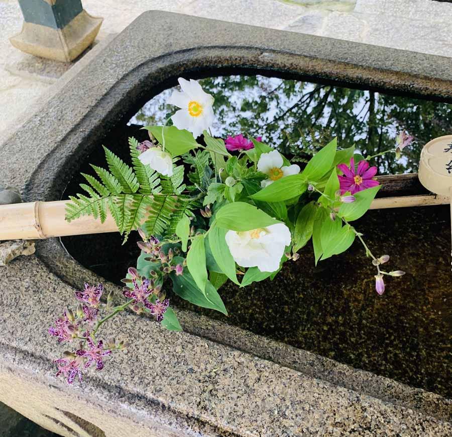 真如堂の控えめに手水舎を飾る花手水