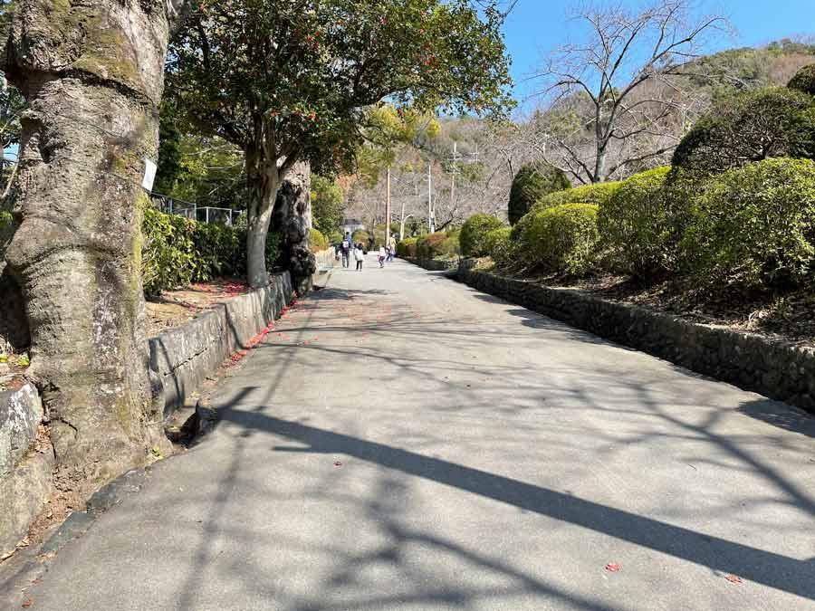 公園から動物園への坂
