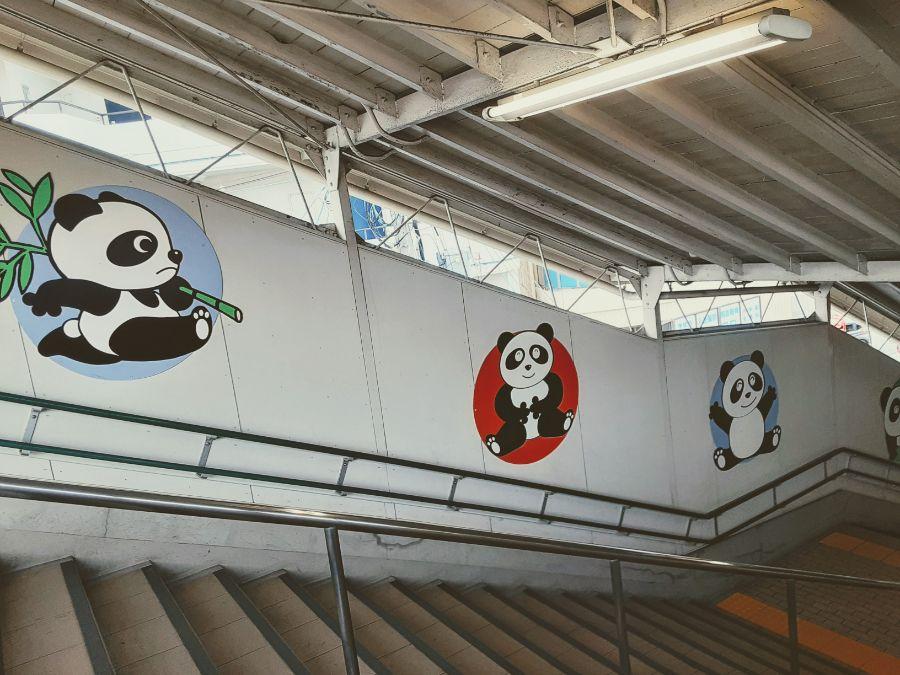 階段の壁面に描かれたパンダのイラスト