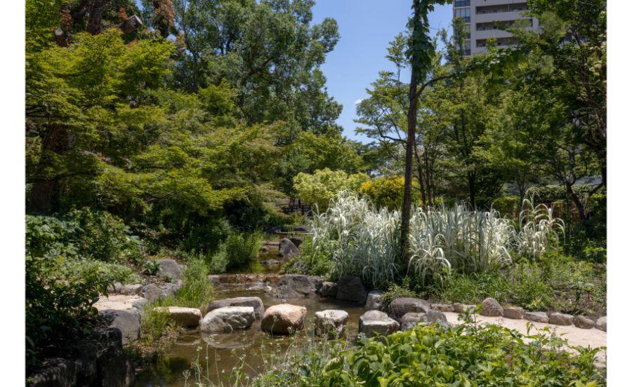 宝塚文化芸術センターの庭園
