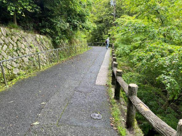 滝へ向かう下りの坂道