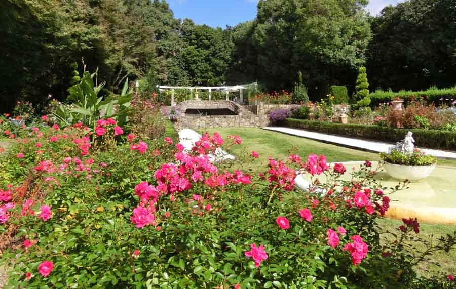 須磨離宮公園の秋の花の庭園